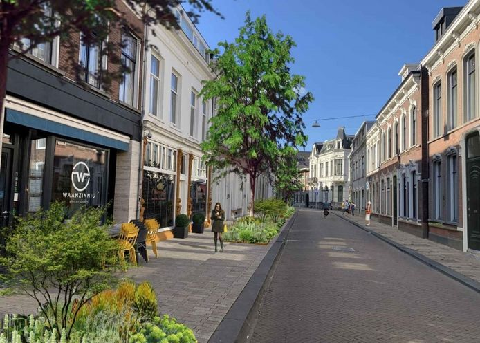 De Willem II-straat groener, in juni gaat de inrichting op de schop.