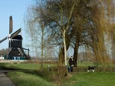 Nog snel meer geld voor onderhoud monumenten Neerijnen