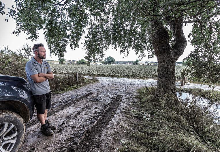 Zijn eigen perceel met suikerbieten langs de Maas is ondergelopen. Beeld Roger Dohmen