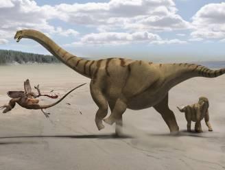 Dinosaurus met kop van krokodil gevonden in Australië