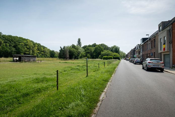 Tanguy Goetze wil zeven padelvelden laten aanleggen op dit stuk weiland aan de Nazaretdreef.