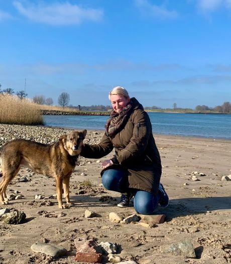De River Dogs lopen iedere dag een rondje langs de Lek: 'We nemen geregeld een thermoskan koffie mee'