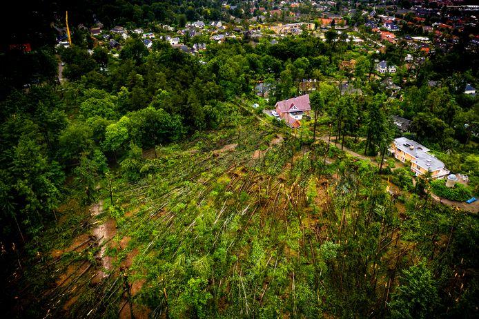 Een luchtfoto van omgevallen bomen in het Lombokbos bij Leersum.
