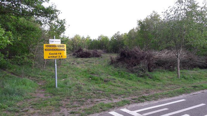 Het gesneuvelde bosperceel aan de Nistelrooise Baan in Schaijk. Om wildcrossers te weren is het onlangs tot verboden gebied verklaard.