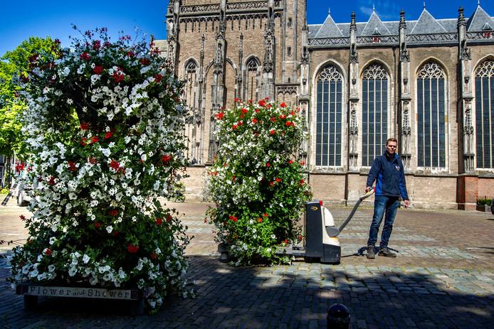 Frans van de Greef plaatst een flink aantal zogeheten 'flower towers' op het Grote Kerkhof.