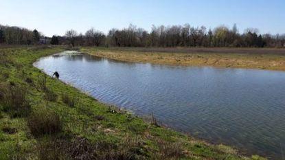 Puzzel is nu compleet: Kempens Landschap koopt laatste stukje private grond in landschapspark Frijthout