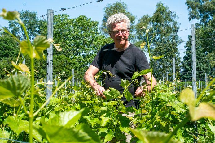 Henk Aarts van Wijngoed Zurrick.