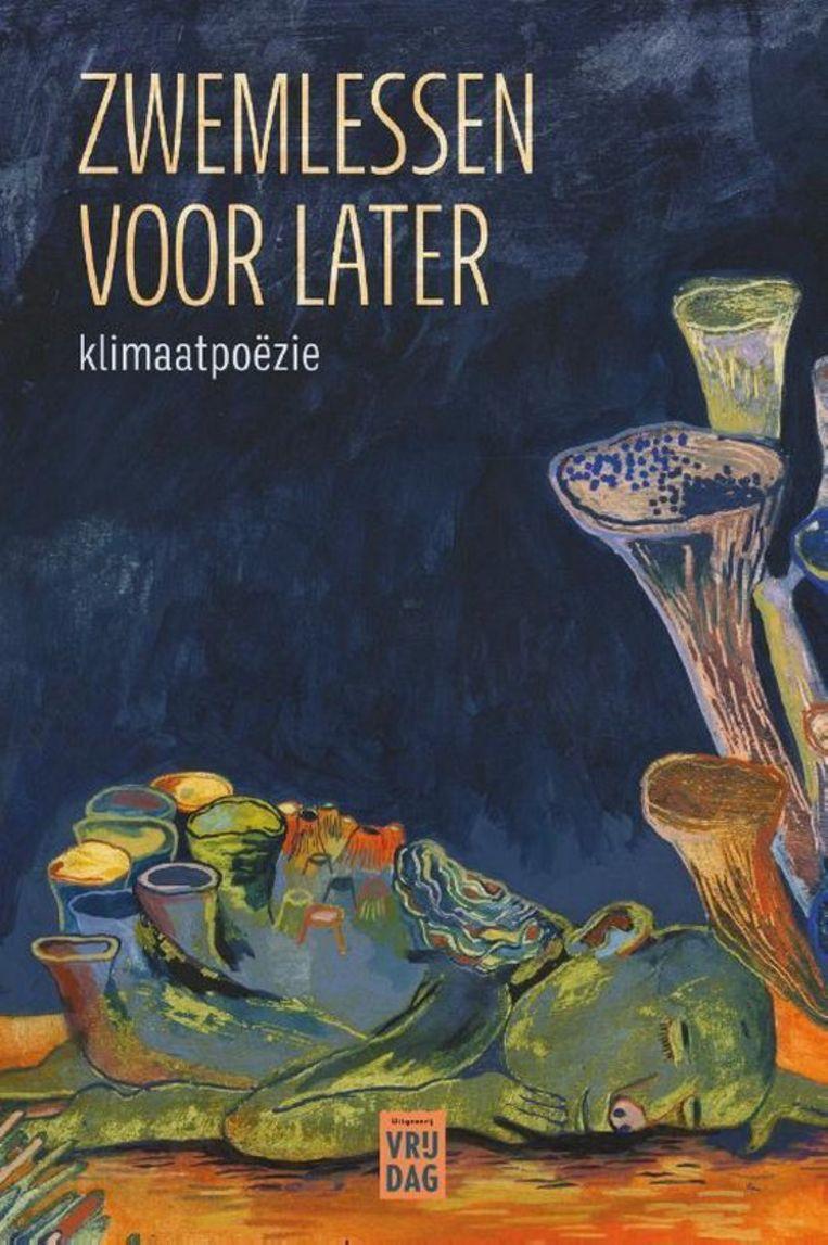 Diverse auteurs, 'Zwemlessen voor later', Vrijdag, 191 p., 20 euro. Beeld RV