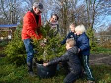 Kerstboom Denny uit Kerstbomenhotel Harderwijk mag weer even naar binnen
