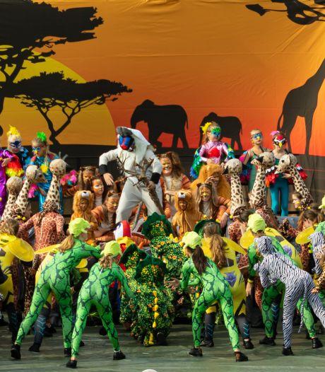 Lion King-spektakel van Willemstadse dansschool in RBC-stadion: 'Een mooie uitdaging'