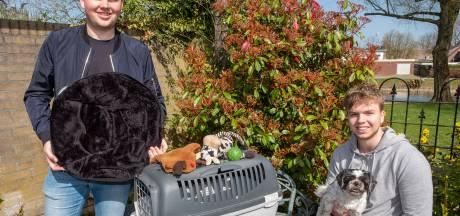 Bedrijf starten in coronatijd garantie op ellende? Niet voor jonge hondenliefhebbers uit Ooij: 'Lockdown was perfect voor ons'