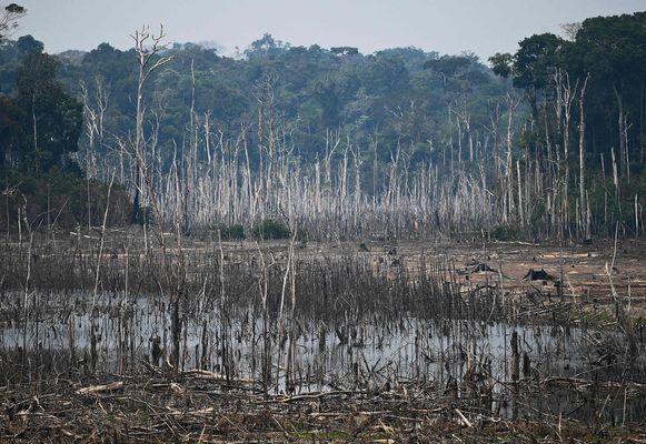 Een ontbost stuk van de Amazone in Brazilië.