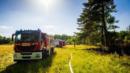 IN BEELD. Brandweer rukt massaal uit naar natuurbrand in Ravels