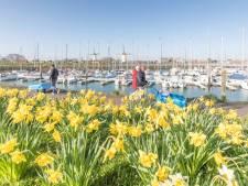 Wemeldinge kan het mooiste dorp van Nederland worden