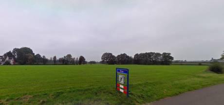 Wel of geen windmolen aan de Edese Dwarsweg? Een weiland van verschil in opvattingen