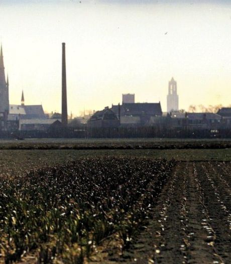 Pijlsweerd was in 1928 een groen hartje omsingeld door een grote boze hongerige stad