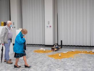 """""""Kunst en wetenschap gaan perfect samen"""": reizende expo OVERLAP strijkt neer in Antwerpen"""