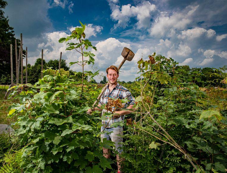 Boer Dries Blind (30) uit Terwolde deelde vorig jaar 60.000 perenbomen uit vanaf zijn akkerbouwbedrijf en plantte daar zelf ook veel boompjes en struiken aan. Beeld Rob Voss
