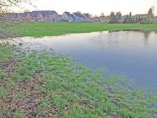 "Brugge wil 63 woningen in 'watergevoelig' gebied, maar bewoners en minister Demir protesteren: ""Bouwen in zo'n gebied breekt zuur op, stop ermee"""