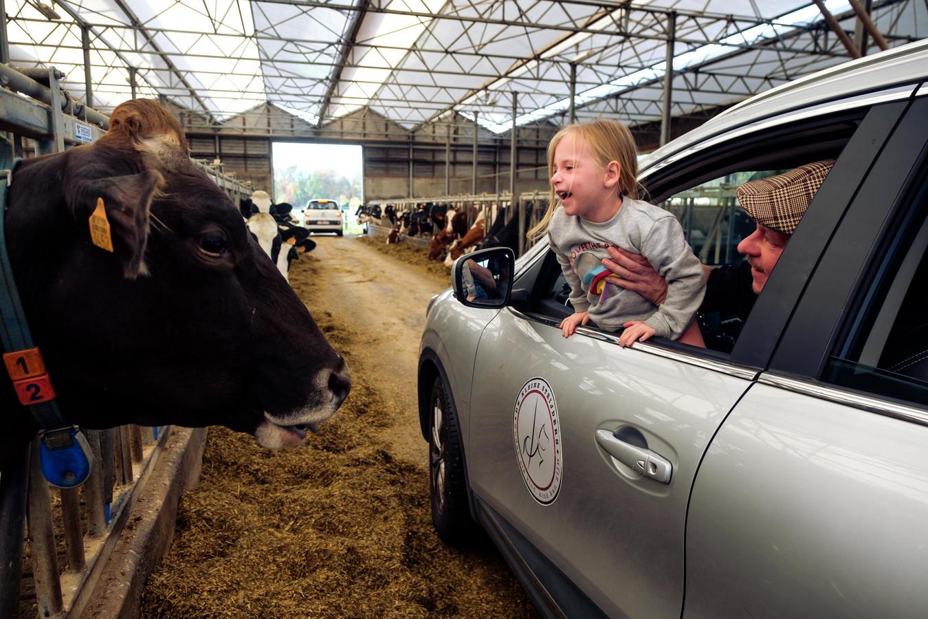 De 'Binnen Bij Boeren'-dagen worden in 6 gemeentes van 't Pleckske vzw georganiseerd.
