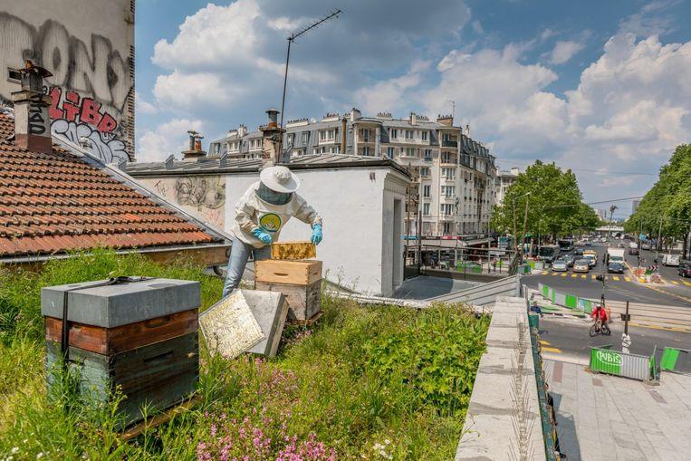 Stadsimker Volkan Tanaci aan het werk op een Parijs dak. Beeld RV