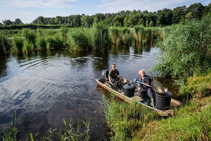 Maandagochtend vanaf 8 uur gaan medewerkers van het waterschap Vechtstromen in bootjes het water van het Kristalbad op om dode watervogels te verwijderen.
