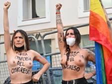 Des militantes FEMEN protestent contre l'homophobie devant le Congrès à Madrid