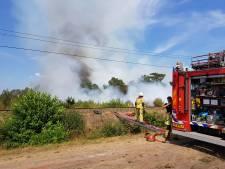 Geen treinen tussen Ommen en Mariënberg vanwege bosbrand