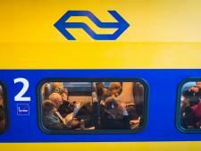 Tot de middag minder treinen tussen Utrecht CS en Gouda