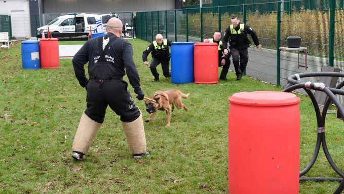 Hondenbrigade politie rolt vechtend over straat