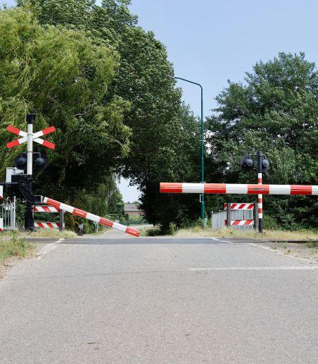 Treinverkeer tussen Boxmeer en Cuijk lag groot deel van de middag plat door aangereden honden