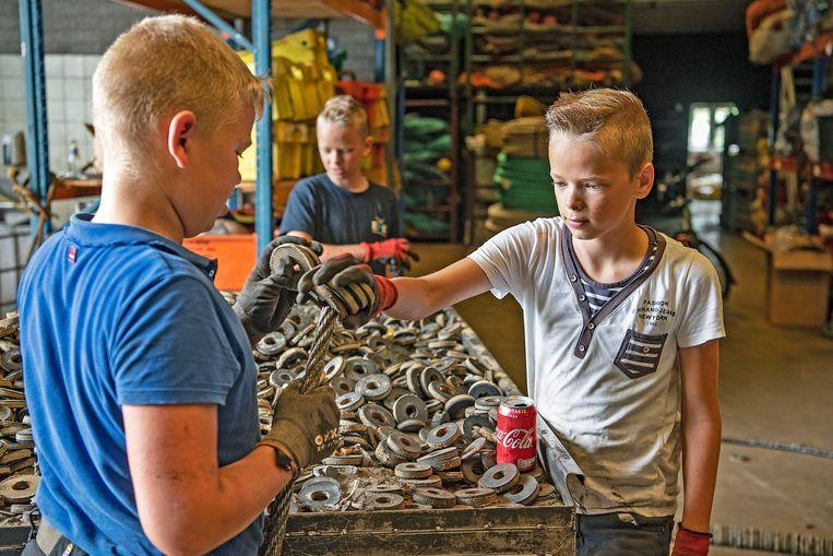 De zonen van familie De Boer leren het vak in de praktijk.  Beeld  Guus Dubbelman / de Volkskrant