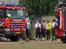 Brandweer haalt in Echteld een paard uit de sloot