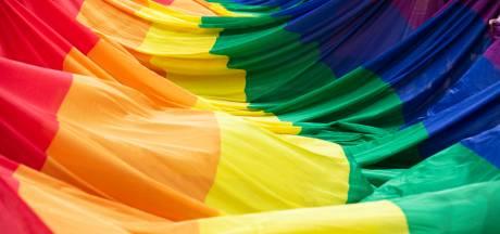 Droits des LGBT: la Flandre condamne la loi hongroise