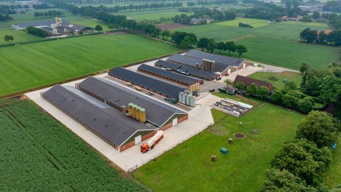 Veel minder boerenbedrijven in Deurne; stijging van aantal kuikens en biggen