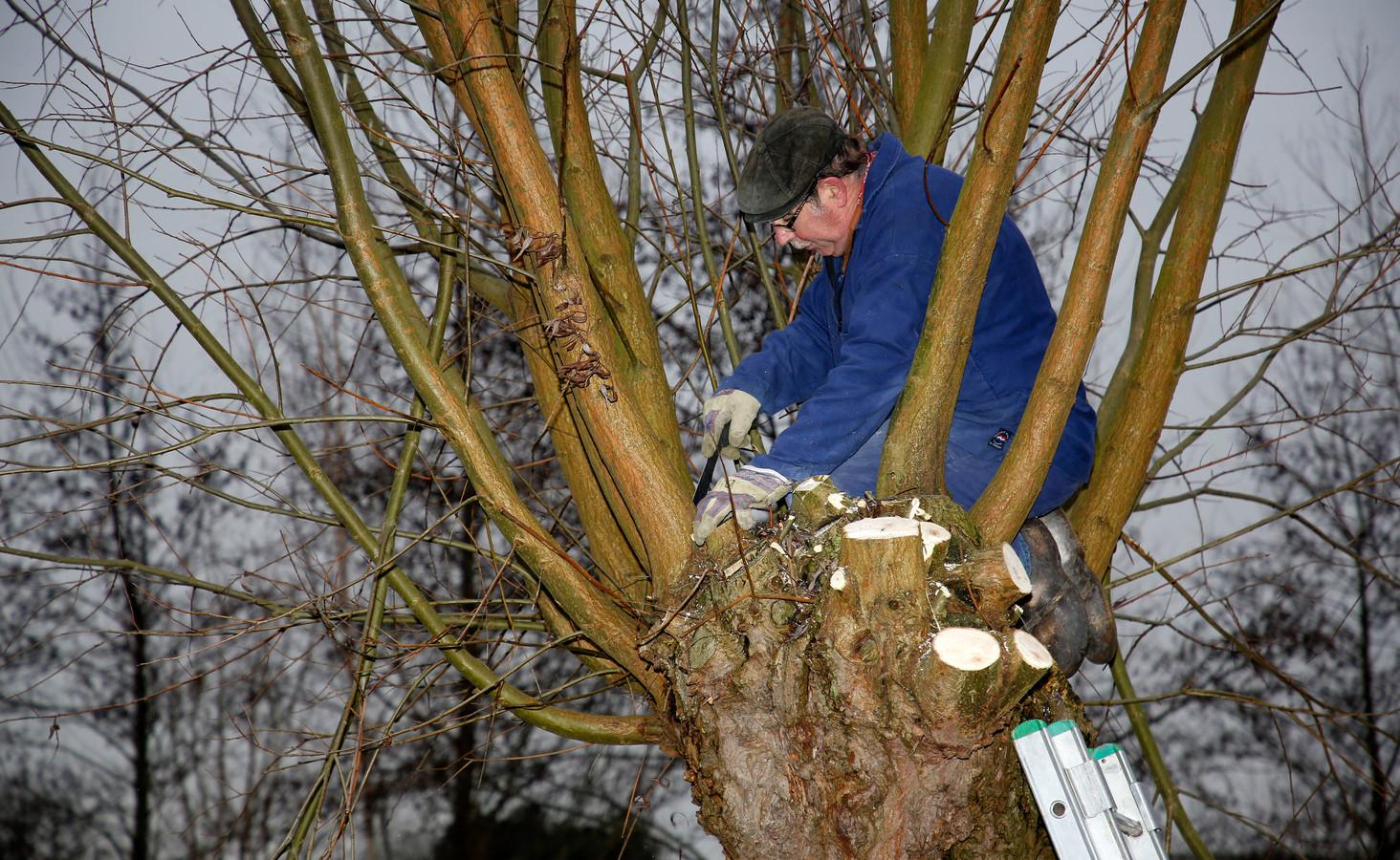 Gerard van Daele aan het werk op het erf van de familie Scheele aan de Klakbaan bij IJzendijke.