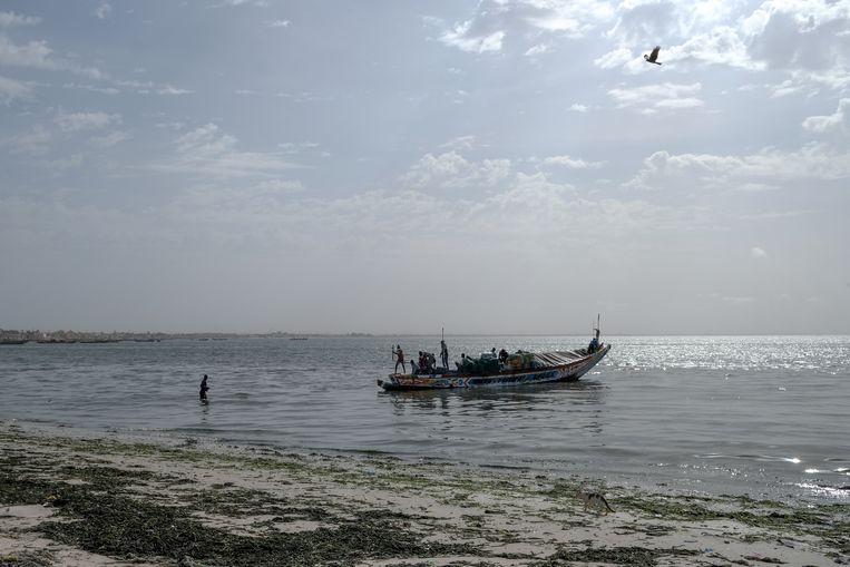 Vissers in Dakar hebben nog nooit zo weinig verkocht, zeggen ze. Maar ze gaan door, hopend op betere tijden. Beeld RV