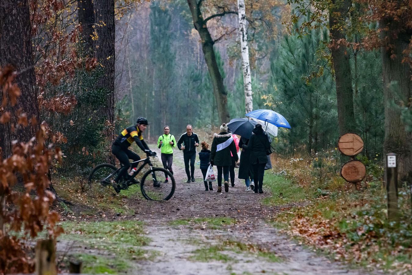 Mountainbikers en wandelaars treffen elkaar regelmatig in de bossen bij Ossendrecht. Irritaties die zo kunnen ontstaan, zijn mogelijk de aanleiding voor de staalkabels die nu in het bos gespannen zijn en al tot één gewonde mtb'er hebben geleid.