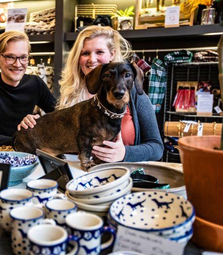 Eerste teckelwinkel van Nederland krijgt vast stekje in Deventer: 'Echt een teckelwalhalla'