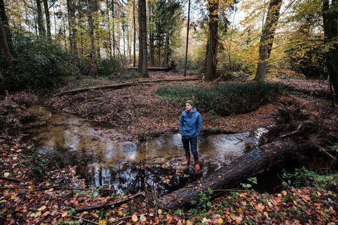 Ecoloog Matthijs de Vos in de Ratumse beek waar dode bomen moeten helpen tegen de verdroging.