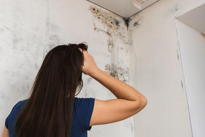 In te vochtige huizen kan schimmel ontstaan.