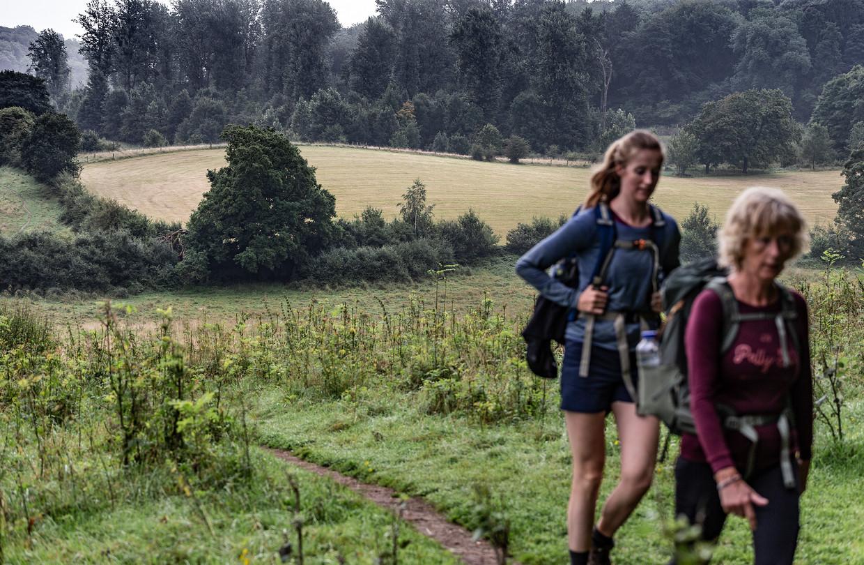 Struingebied bij Wolfhaag. Op de achtergrond een gecultiveerde weide, op de voorgrond de grond waarop de natuur haar gang kan gaan.