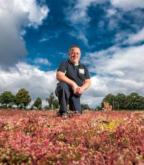 Dankzij Rolph uit Holten kleuren steeds meer daken in Nederland groen: 'Door watersnood actueler dan ooit'