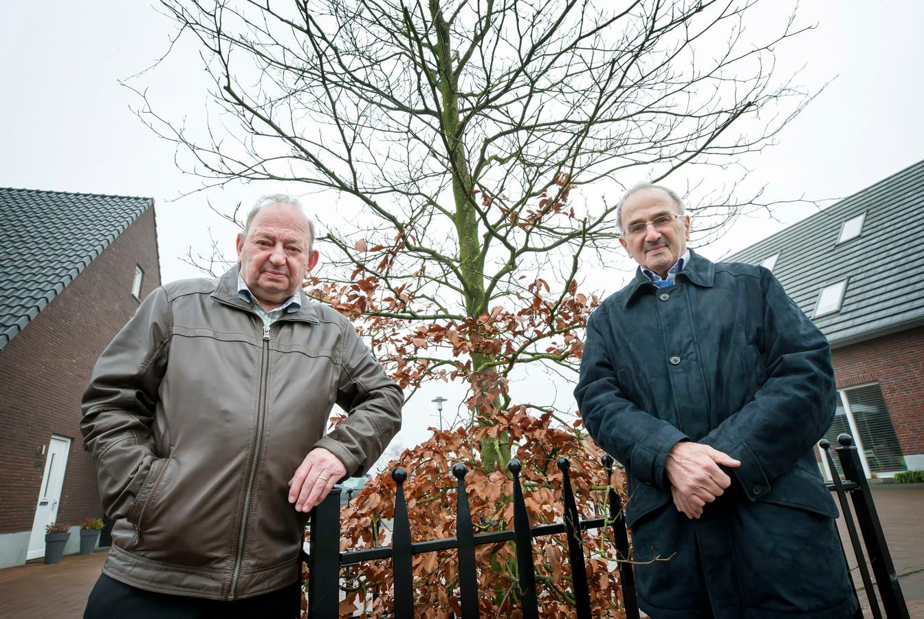 Tweelingbroers Piet en Cees Oomen (80) bij de Adrianus Oomen-boom, vernoemd naar hun vader die sneuvelde in de TWeede Wereldoorlog.