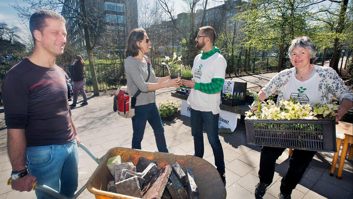 Bij Operatie Steenbreek krijgen mensen gratis planten als ze tuintegels inleveren, zoals zaterdag bij de Haagse basisschool Wonnebald.