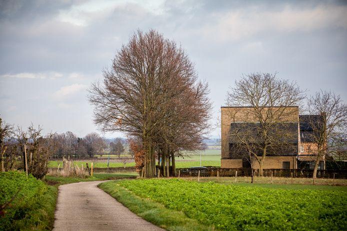 Een beeld van Rosmeer bij Bilzen.