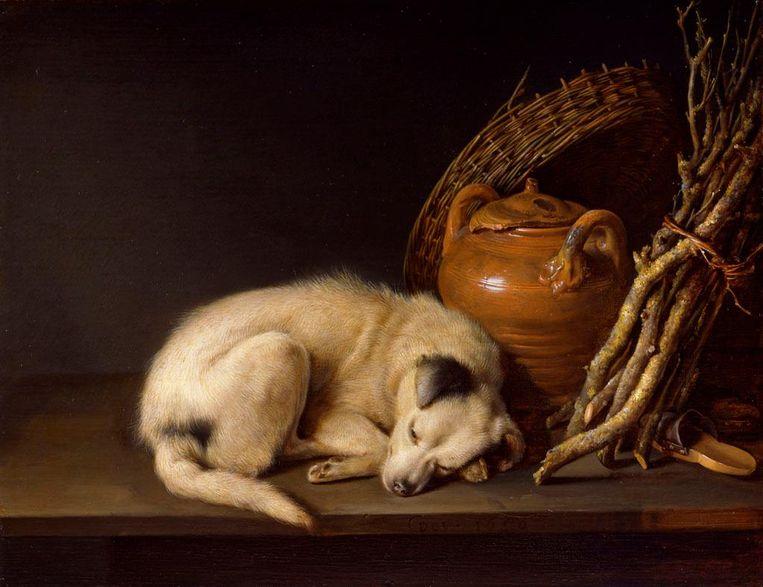 Gerrit Dou, Rustend hondje, 1650. Beeld