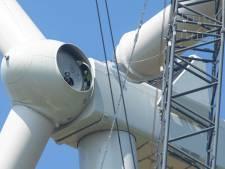 Plan vierde windmolen bij Etten-Leur: 'We zouden toch inzetten op zonne-energie?'