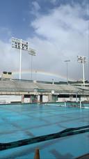 Een training in het universiteitszwembad.