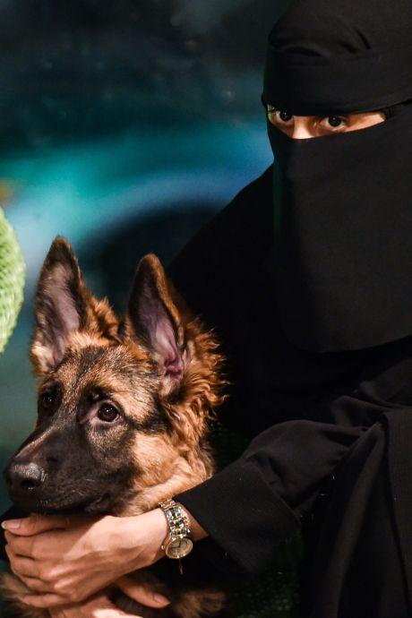 Les chiens autorisés dans un café: une première en Arabie saoudite